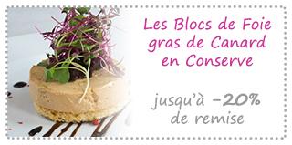Les Blocs de Foie gras Canard