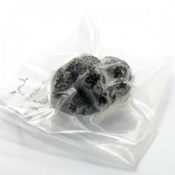 Truffes noires d'hiver surgelées tuber melanosporum du Périgord, 25g