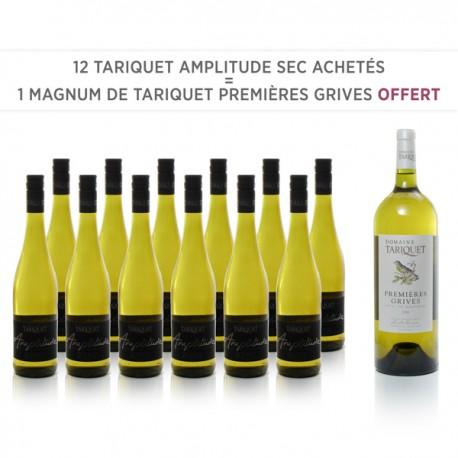 12 Tariquet Amplitude IGP Côtes de Gascogne Sec 2017 + 1 Magnum 1ere Grive