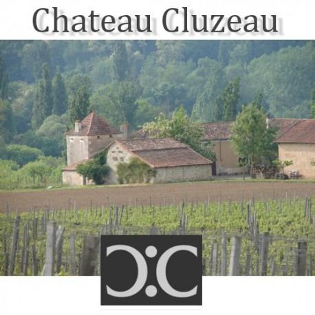 Chateau Cluzeau