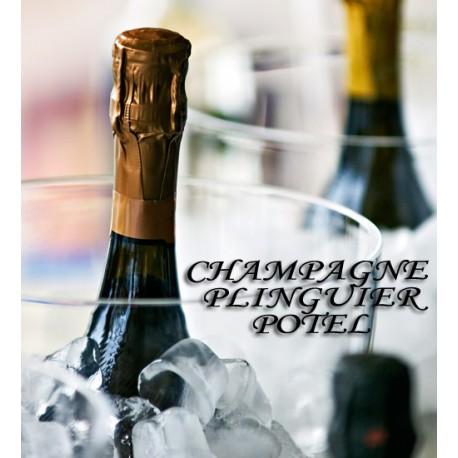 Champagne Plinguier-Potel