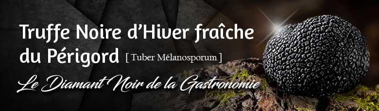 Truffes Noires d'Hiver fraîches du Périgord